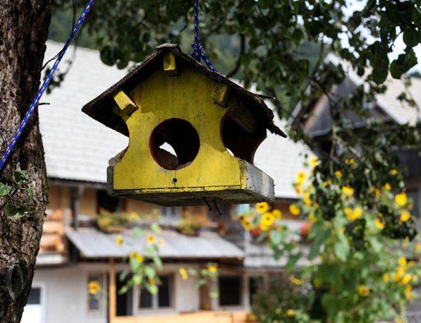 Apartmaji pri Kozmavo Little House